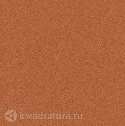Линолеум Tarkett (Primo Plus) Cpri -305