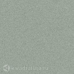 Линолеум Tarkett (Primo Plus) Cpri-311